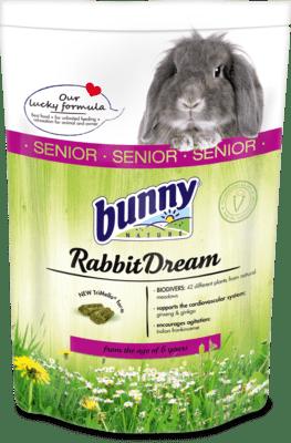Bunny RabbitDream Senior
