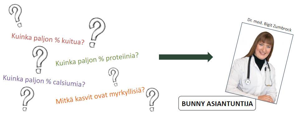 Bunny asiantuntija